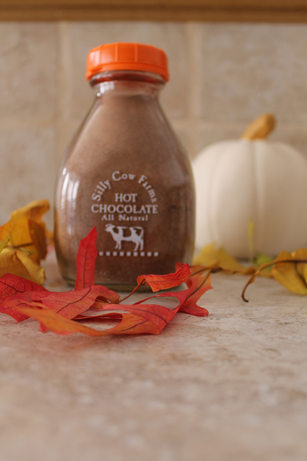 Thirsty Thursday-Spiked Pumpkin Hot Chocolate-allaboutthedetails.com-2-