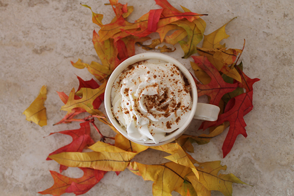 Thirsty Thursday-Spiked Pumpkin Hot Chocolate-allaboutthedetails.com-6-
