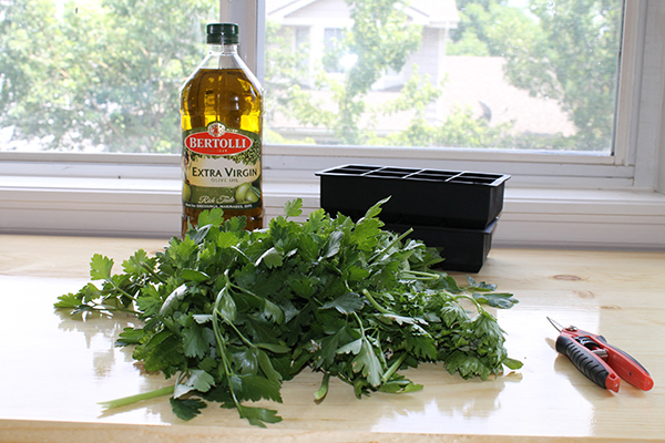 How To Freeze Fresh Herbs -allaboutthedetails-2