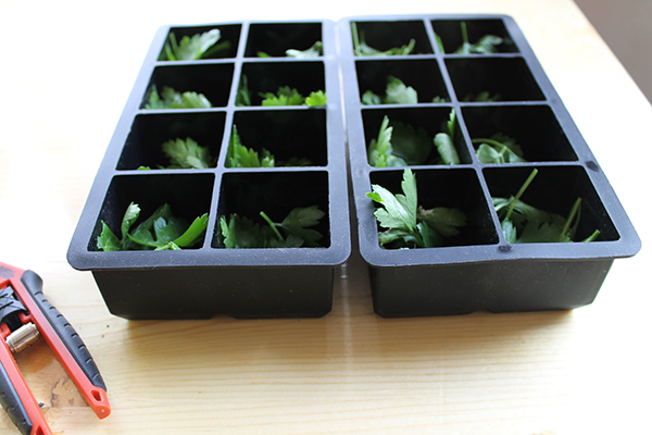 How To Freeze Fresh Herbs -allaboutthedetails-3